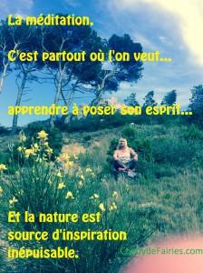 MEDIT nature
